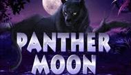 Зеркало онлайн аппарата Panther Moon